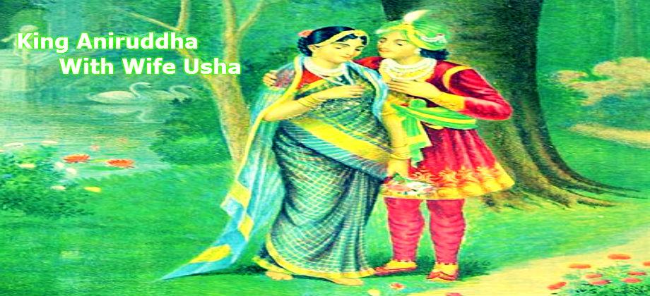 Aniruddha Usha Krishna